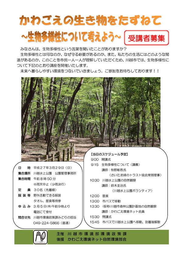 kawagoecity20150329.jpg