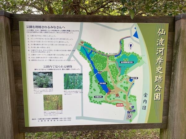 MKKN167-202009_kawagoetoreasure01_1414s.jpg