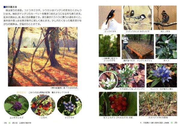 kkn20-kawamori_autumn.jpg