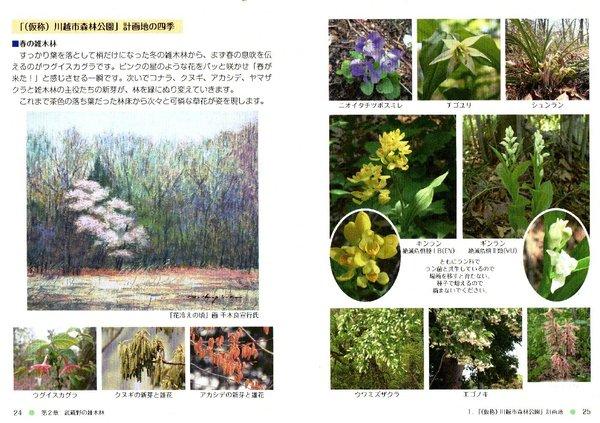 kkn20-kawamori_spring.jpg