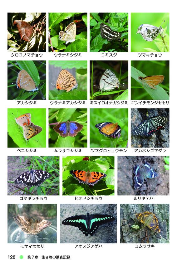 kawagoe_nature_book-128.jpg